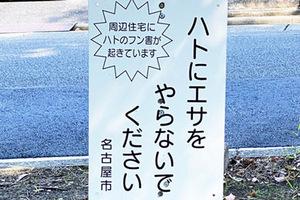 Koen2_400x266.jpg