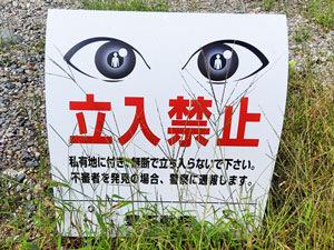 Eyes1_300x225.jpg