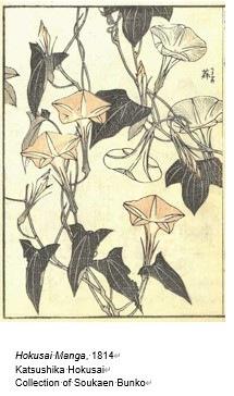 植物物語.jpg