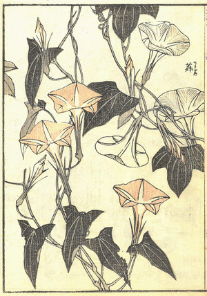 P8_c_Hokusai.jpg